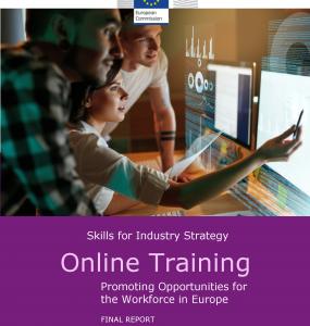 Skills for industry, Online training